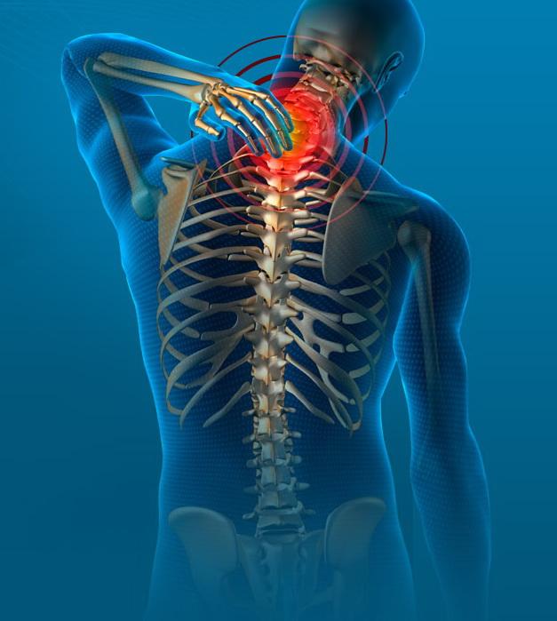 xray chiropractic